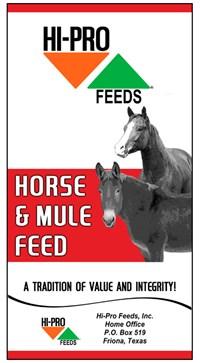 Horse & Mule Feed Bag
