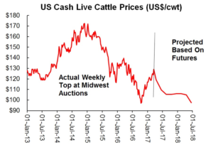 Chart of Cash Live Cattle Prices