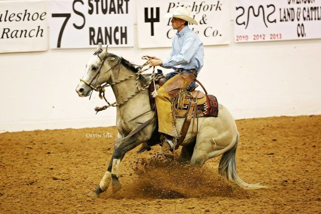 Gatlin Duncan works a horse in the show ring