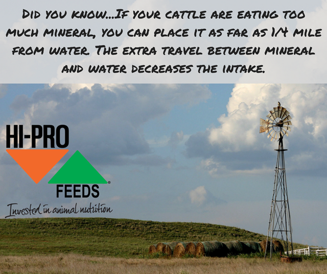 Did you know...if your cattle are eating too much mineral, you can move it further from water.