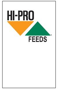 Plain Logo