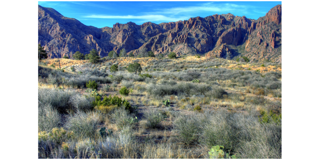 Photo of mountains from Big Bend National Park