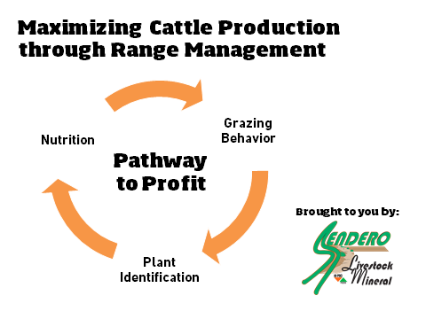 PAthway to Profit Graphic showing the three pillars of range management