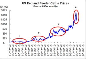 Chart of US Feeder Cattle Prices