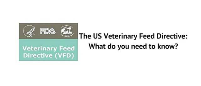 Veterinary Feed Directive: What do you need to know?