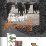 Cover of Mineral Guide