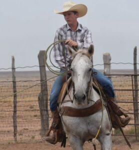 Kolton Wink Working Cattle
